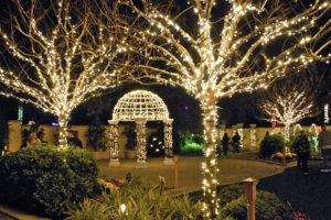holiday-lights-in-the-gardens