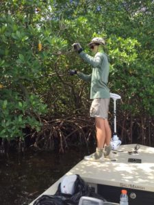 tbw-monofilament-cleanup
