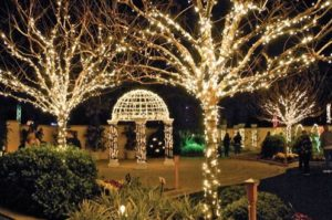 lights-in-the-garden-dome