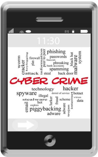 Paradise News Magazine | Small Business Anti-Cybercrime